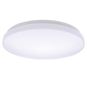 Honeywell White LED 21